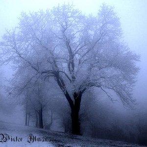 Image for 'Winter Almanac'