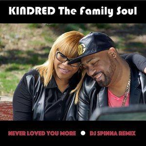 Image for 'Never Loved You More (DJ Spinna Remix)'