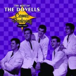 Image for 'Cameo Parkway - The Best Of The Dovells (Original Hit Recordings)'