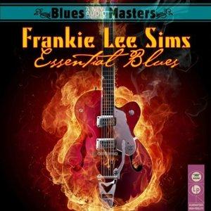 Immagine per 'Essential Blues'