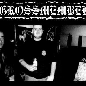 Image for 'Grossmember'