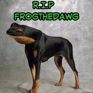 Image for 'Frog The Dawg'