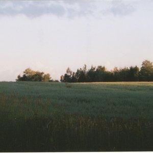 Image for 'Melancholy'