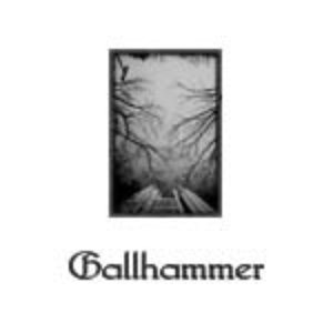 Image for 'Gallhammer'