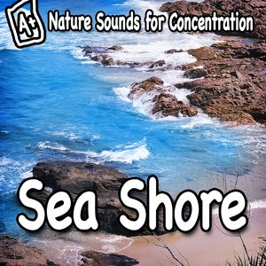 Imagem de 'Nature Sounds for Concentration – Sea Shore'