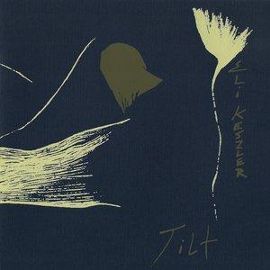 Image for 'Tilt'