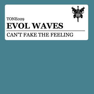 Image for 'Can't Fake The Feeling'