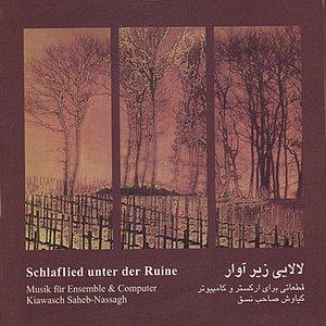 Image for 'Schlaflied unter der Ruine(Lalai zir-e Avar) - Music fur Ensemble & Computer'