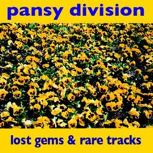 Image pour 'Lost Gems & Rare Tracks'