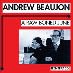 Bild für 'A Raw-Boned June'