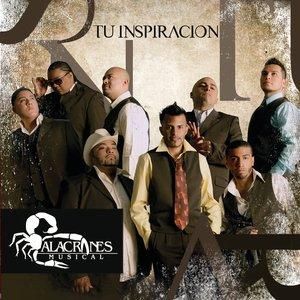 Image for 'Fue Su Amor'