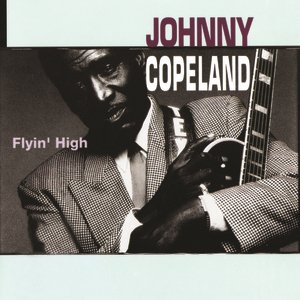 Image pour 'Flyin' High'