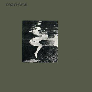 Image for 'Dog Photos'