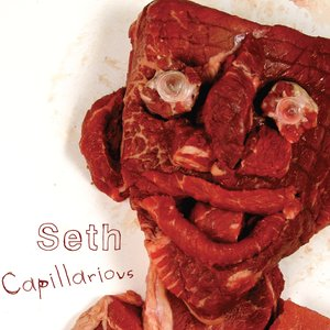 Image for 'Capillarious'