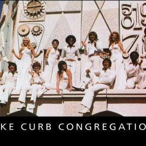 Image for 'Mike Curb Congregation'