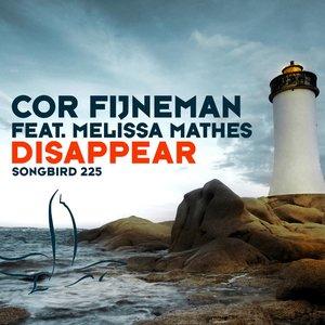 Immagine per 'Disappear (Carlos Sun Juan Remix)'