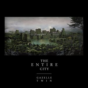 'The Entire City'の画像