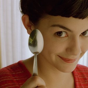 Image for 'Il favoloso mondo di Amélie'