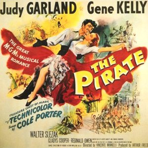Image for 'The Pirate'