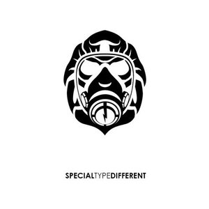 Image for 'Special Type Different'