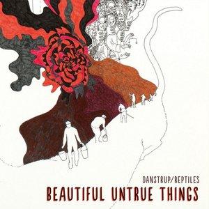 Image for 'Beautiful Untrue Things'