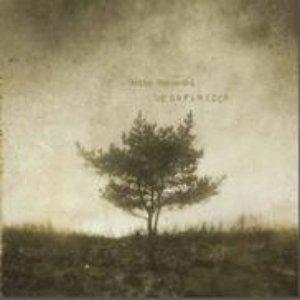 Image for 'Desaparecer'