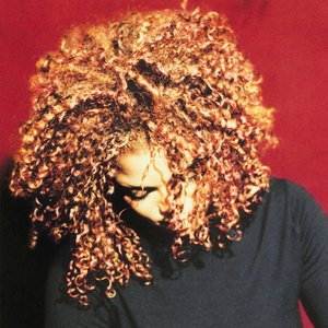 Immagine per 'The Velvet Rope'