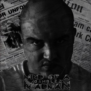 Image for 'Mind of a Madman'