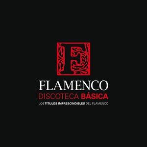 Bild für 'Discoteca Básica Del Flamenco'