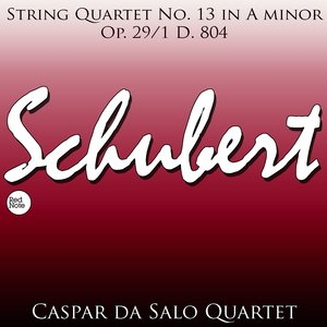 Image for 'Schubert: String Quartet No. 13 in A minor, Op. 29/1 D. 804'