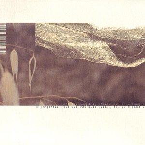 Imagen de 'maxine'