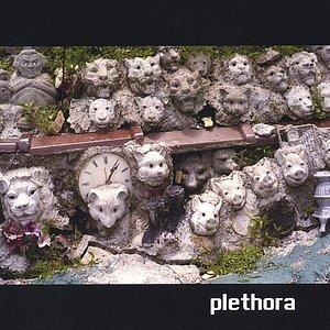 Image for 'Plethora'