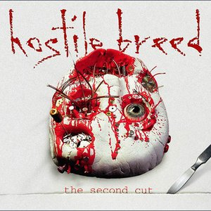 Image for 'The Second Cut'