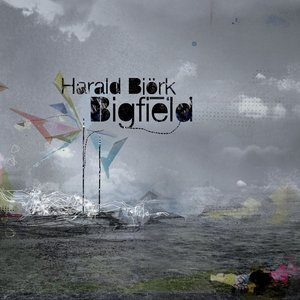 Image for 'Bigfield'