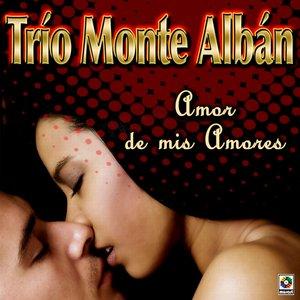 Image for 'Amor De Mis Amores'