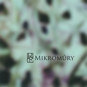 Image for 'Mikromůry'