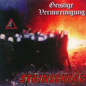 Image for 'Steinschlag'