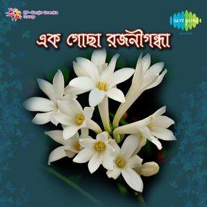 Image for 'Krishnachura Agun'