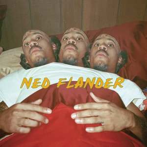 Image pour 'NY (Ned Flander)'