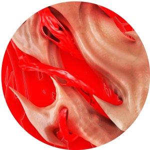 Image for 'Flesh'