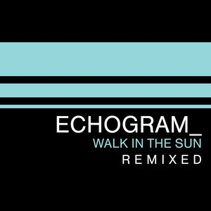 Image for 'Walk In The Sun Remixed'