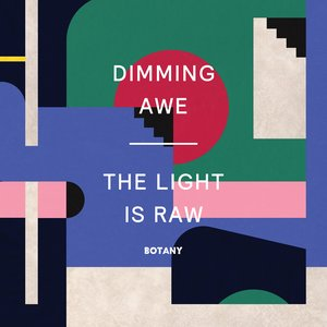 Image for 'Dimming Awe, the Light Is Raw'