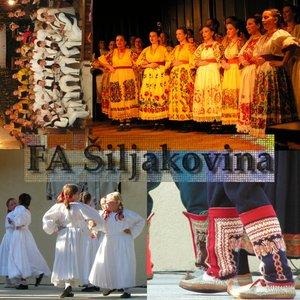 Image for 'Folklorni ansambl Šiljakovina'