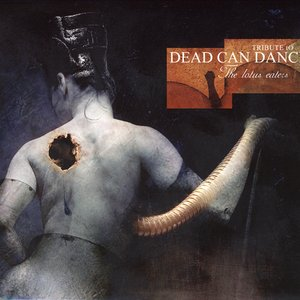 Image for 'The Lotus Eaters: Tribute to Dead Can Dance'