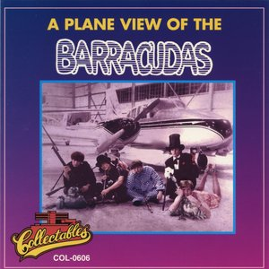 Image for 'A Plane View of the Barracudas'
