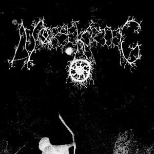 Image for 'Norsekrieg'
