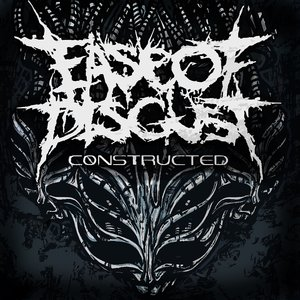 Image for 'Constructed'