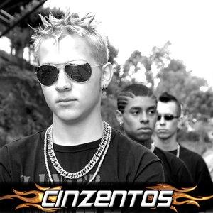 Bild für 'Cinzentos'