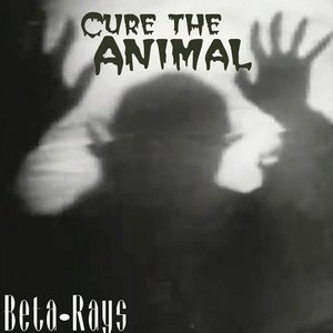 Image for 'Cure the Animal'