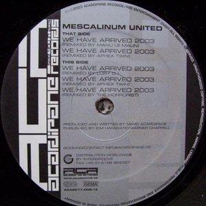 Bild für 'We Have Arrived 2003 (Remixes)'